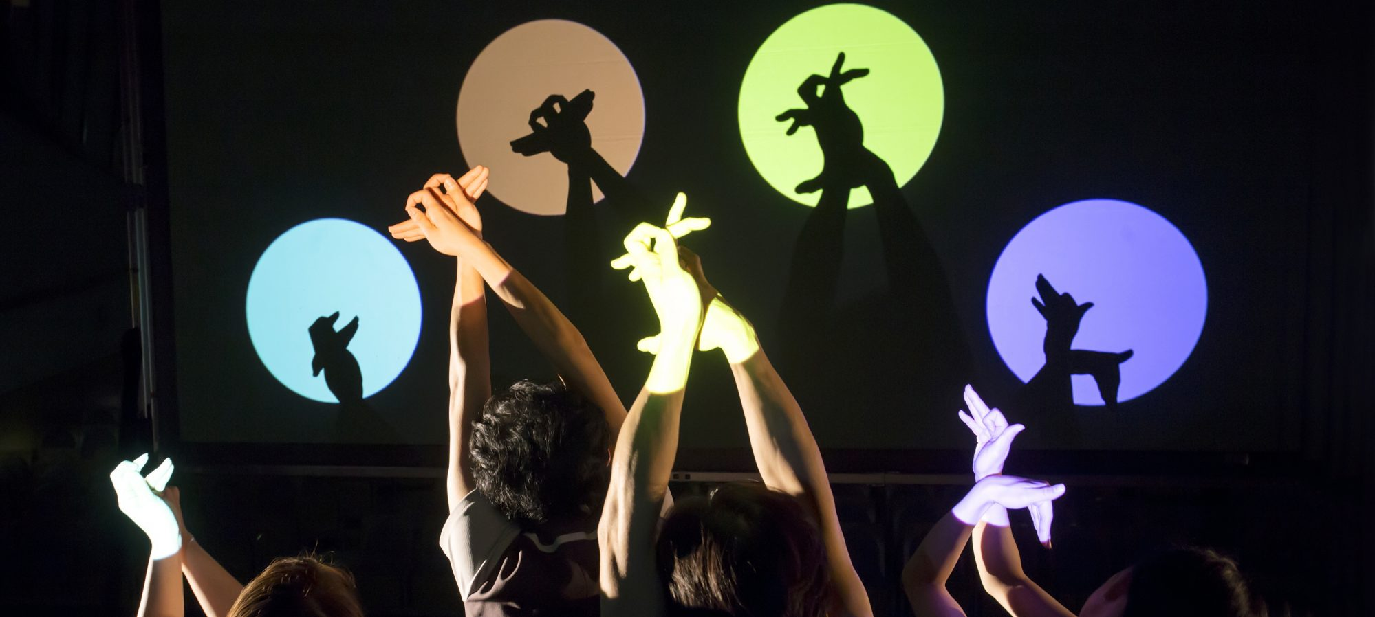 Shadow Play Theatre KAKASHIZA